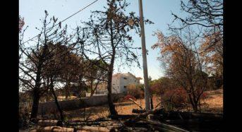 Φωτιά Μάτι: Το GPS της Πυροσβεστικής δείχνει ότι άφησαν απροστάτευτη την Πεντέλη