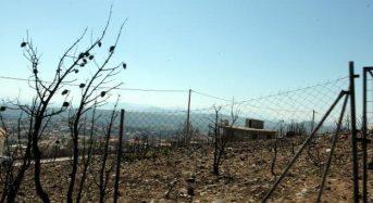 Δικογραφία για Μάτι: Παντελής έλλειψη συντονισμού και έγκαιρης παρέμβασης