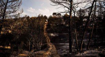 Μάτι: Οι προϋποθέσεις για την αποκατάσταση των σπιτιών που κάηκαν